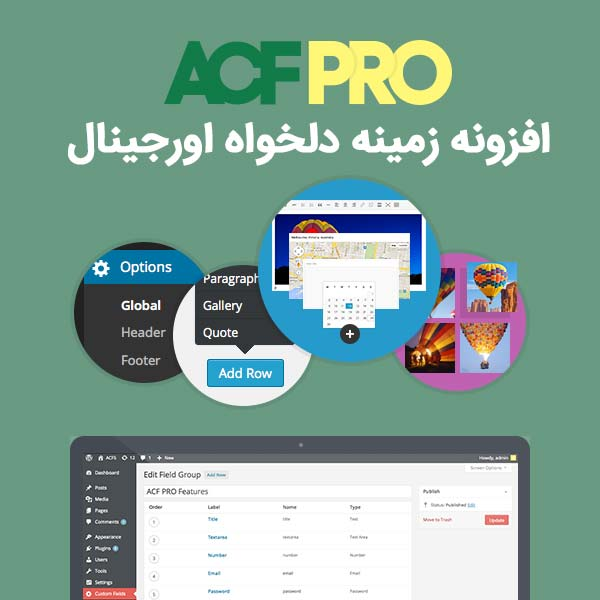 افزونه advanced custom fields pro